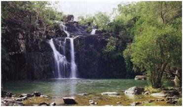 Cedar Creek Falls Whitsundays