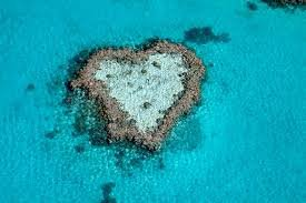 The Heart of the Great Barrier Reef is Healthy in the Whitsundays