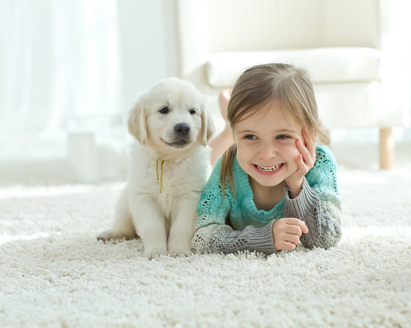 Thinking about new carpet? Read this first: